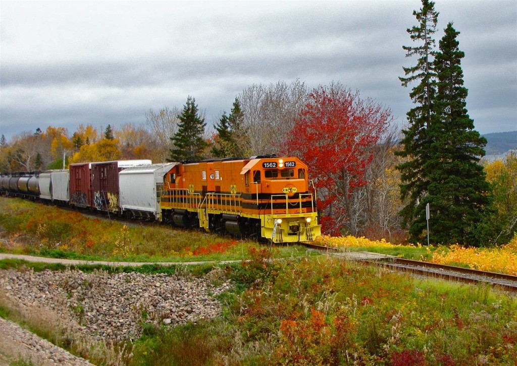 Freight train led by two orange and yellow locomotives in centre of image, surrounded by fall foliage under an overcast sky.